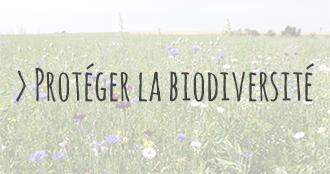 https://www.larattedutouquet.com/wp-content/uploads/2016/08/biodiversite-1.jpg