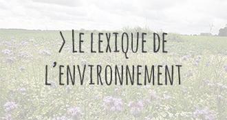 https://www.larattedutouquet.com/wp-content/uploads/2016/08/lexiqueenv-2.jpg