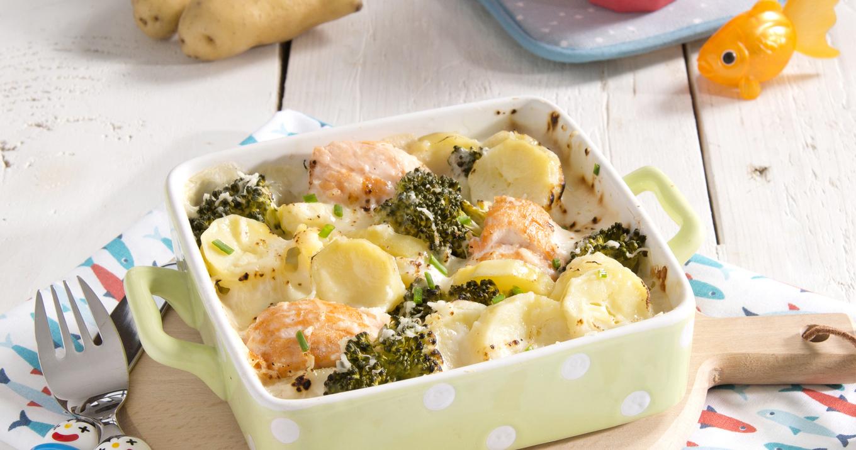 Gratin de pommes de terre, saumon et brocolis